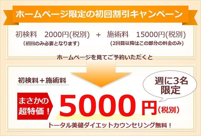 17000円が超特価5000円