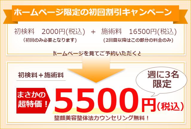 初回お試し特別価格 17000円が、まさかの超特価5000円!
